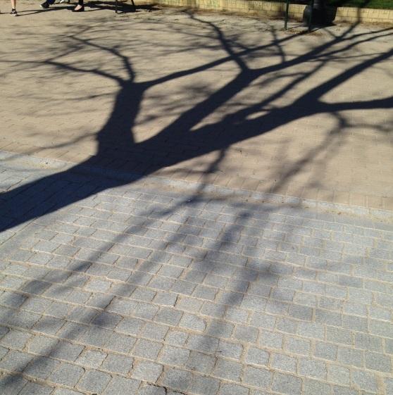 Sombras en el Templo de Debod. Madrid.
